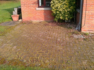 Photo of moss and lichen covered block paving before pretreatment.
